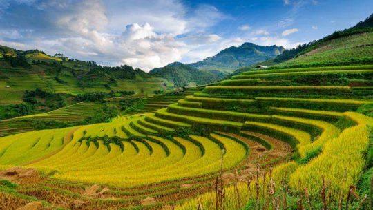 Ce qu'il faut voir et faire au Vietnam lors d'un voyage