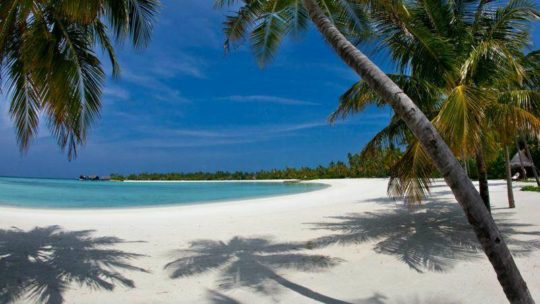Quelles sont les meilleures plages du Vietnam ?