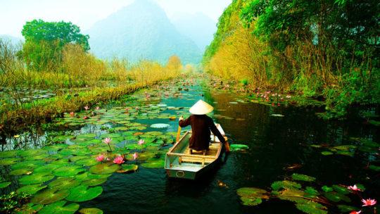 Cinq raisons de visiter le Vietnam lors d'un voyage