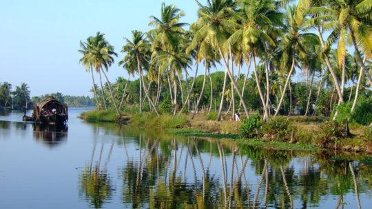 Kerala à découvrir en voyage en Inde